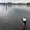 ハゼ釣りに行って来た☆簡単に出来るからハゼ釣りはオススメ