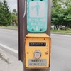 How to use Japanese Crosswalk Pushbutton Traffic Lights? - Traffic Rules in Japan