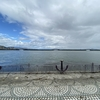 自転車で琵琶湖を見てきた。