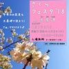 桜の名所 vol.2 大房岬(たいぶさみさき)