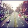 雨の表参道14時