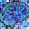 右脳(イメージ)と左脳(論理)のバランスを超えた対称性を生み出す絶対世界