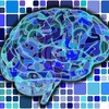 VR(バーチャルリアリティ)の世界が及ぼす脳への影響