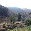 丸鉢山 −猪鼻砦跡−