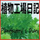 植物工場日記 Plantfactory's Diary