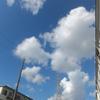 8/26・金曜日「胃ろう・気管切開・嚥下機能マヒ」いつまで生きるのか