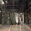 台湾 台南 ラピュタのような世界 安平樹屋に行ってきた!