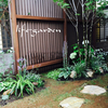 玄関から眺めるお庭