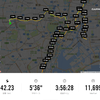 5年連続落選記念 (多分国内最速)東京マラソン2017in2016 勝手に走ってきました!