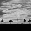 白黒フィルムの終わりの始まり/ Hill of Marchen