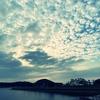 一日一撮 vol.360 仁尾南港公園:海辺