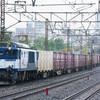 10月15日撮影 東海道線 平塚~大磯間 貨物列車撮影 3075ㇾ 5095ㇾ 2079ㇾ