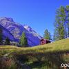 スイス・ツェルマット: リッフェルアルプ~ツェルマットのハイキング
