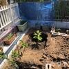 庭に穴を掘る時のコツ