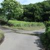 栃木県那珂川町大内の素掘り隧道(仁中農道の隧道)
