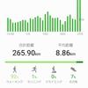 【香港弾丸旅行】HUAWEI Band 2 Proのログで、二日間で40kmを歩いていたことが判明