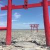 大魚神社(おおうおじんじゃ)海中鳥居 太良町