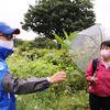 2021/07/04「野草さんぽ@帰化植物見本園」