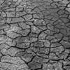 SBC#40 [三分の天災、七分の人災] - 毛沢東の大飢饉