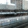 すっごい雨の7月1日です
