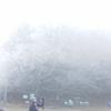 金剛山で樹氷を見ました