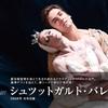 【まもなくです!】シュツットガルト・バレエ団2018年日本公演