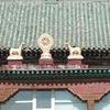 「ハルハ河/ノモンハン」から80年のモンゴルへ(6)モンゴル・日本合同慰霊祭に出席