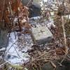 [三角点]★遠登茂山(四等三角点、点名:遠登茂えんとも)標石