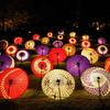 昭和記念公園 秋の夜散歩2020