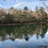 大型犬と雲場池と軽井沢銀座の蜂蜜屋さん