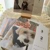 愛犬カレンダー