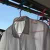 【疑問】長年の疑問。洗濯の頻度はどのくらいにすればバランスがいいのか?