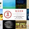 パリフォト・サテライト展示 - Nico - Photographe Japonais -