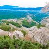 【奈良】一目千本・吉野山の絶景 山を覆う満開の桜