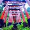 私の第2の人生が始まっています。今更ながらの投稿!7月から「日本語パートナーズ」のプログラムでインドネシアに行きます!!!