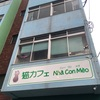保護猫カフェ紹介「Nha Con Meo」(福岡県久留米市)