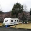 お花見キャンプ in 出会いの森オートキャンプ場