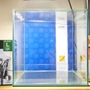 30cmキューブ水槽コトブキレグラス300+GEXラクラクパワーフィルターL始動