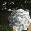 夏の日差しを楽しむ日傘