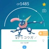 🚶♂️ポケ活日誌#50