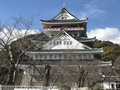 R-18にも指定されている熱海城と秘宝館