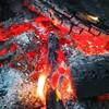 炭火で焼くとなぜおいしいの?
