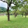【八雲町熊石】熊石青少年旅行村|子供と一日遊べる♬熊石のキャンプ場で外遊び