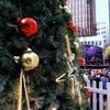 クリスマスが今年もやってくる〜