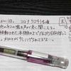 【万年筆・インク】妻のねこ日記・2020年08月第1週!【猫写真と猫イラスト】