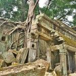 「タ・プローム(Ta Prohm)」~巨大な木の根が遺跡を覆いつくす、自然の驚異を感じる!!