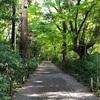【金沢城めぐり】かつて天守があった金沢城の「本丸」は今は緑あふれる散策路