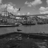 ポルトガル小旅行 - 12 - ポルト (5)