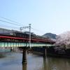 第13回伊豆急全線ウォーク (2016.9.1~2017.5.31)⑬ 蓮台寺~伊豆急下田