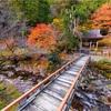 京都・花脊 - 峰定寺と寺谷川の散り紅葉